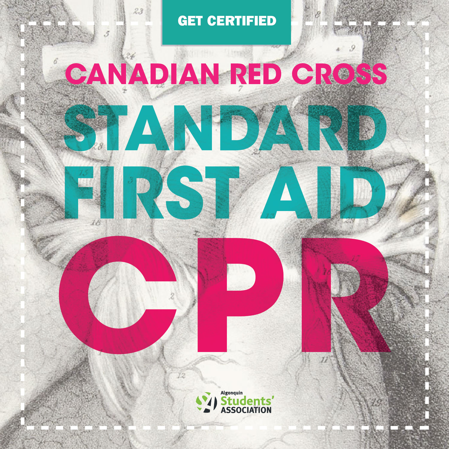 Algonquin College Students Association Cpr Level Chcp And
